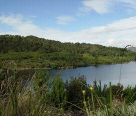 Laguna Pantano Redondo